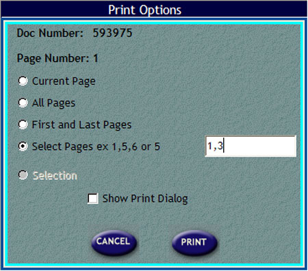 Print Options window
